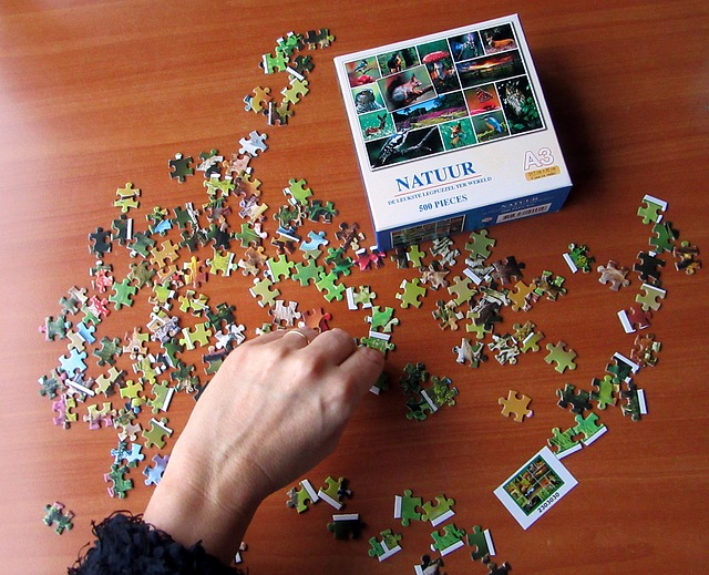Jigsaw Puzzles Help My Racing Thoughts